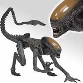 Alien Dog M.M. 6 (aberto)