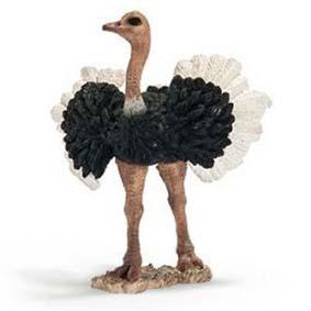 Avestruz macho 14610 (Schleich no Brasil) Ostrich Male