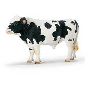 Boi Holstein - 13632