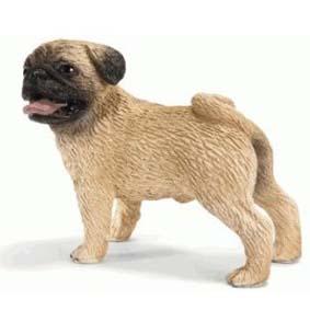 Cão Pug macho 16381 (Schleich 2011 Toys no Brasil) Dog Pug Male