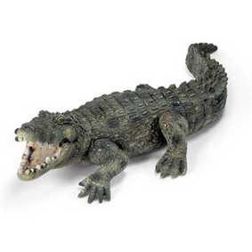 Crocodilo - 14378