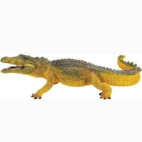 Crocodilo pintado a mão