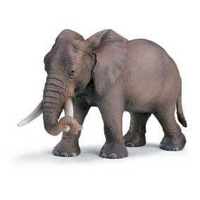 Elefante Africano fêmea - 14342