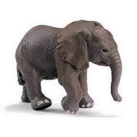 Elefante jovem - 14322