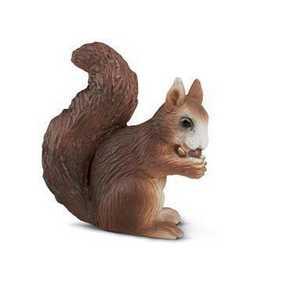 Esquilo comendo - 14252