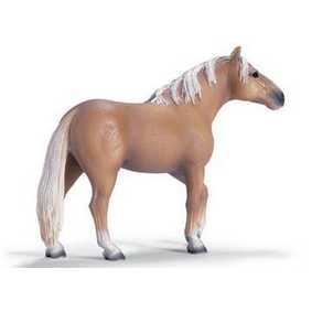 Garanhão Palamino Stallion - 13618