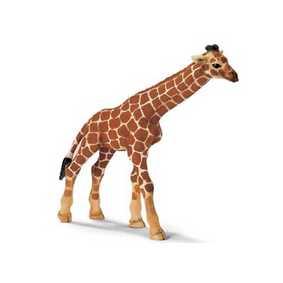 Girafa - 14321
