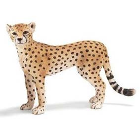 Guepardo fêmea 14614 (Schleich no Brasil) Cheetah Female