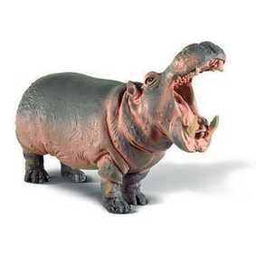 Hipopótamo - 14132