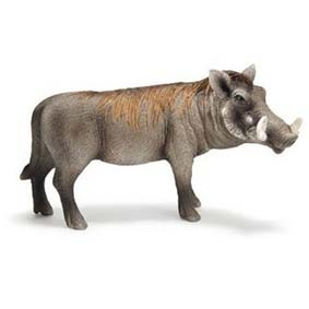 Javali macho 14611 (Schleich Brasil) Warthog Boar