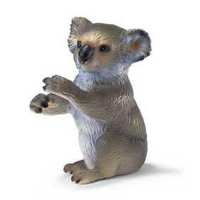Koala - 14303