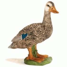 Pato Selvagem 13653 (Schleich 2011 Toys Brasil) Duck