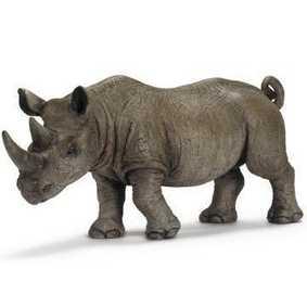 Rinoceronte africano - 14394