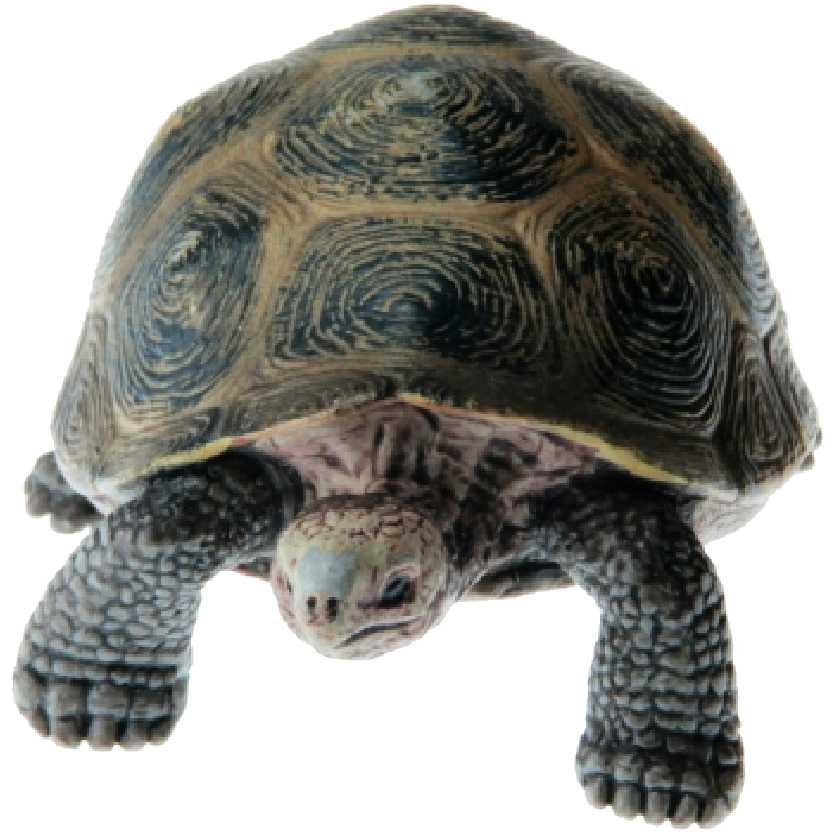 Tartaruga gigante 14601 Schleich Giant Turtle