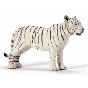 Tigre branco fêmea - 14383