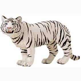 Tigre branco pintado a mão