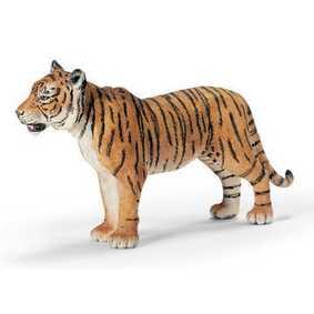 Tigre Fêmea -14370