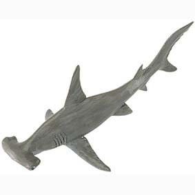Tubarão Cabeça Martelo pintado a mão