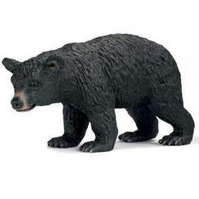 Urso preto fêmea - 14316
