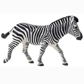 Zebra pintada a mão